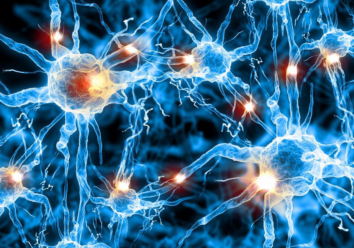 Румынский ученый Георге Маринеску был первым, кто с помощью микроскопа увидел живые нервные клетки человека.
