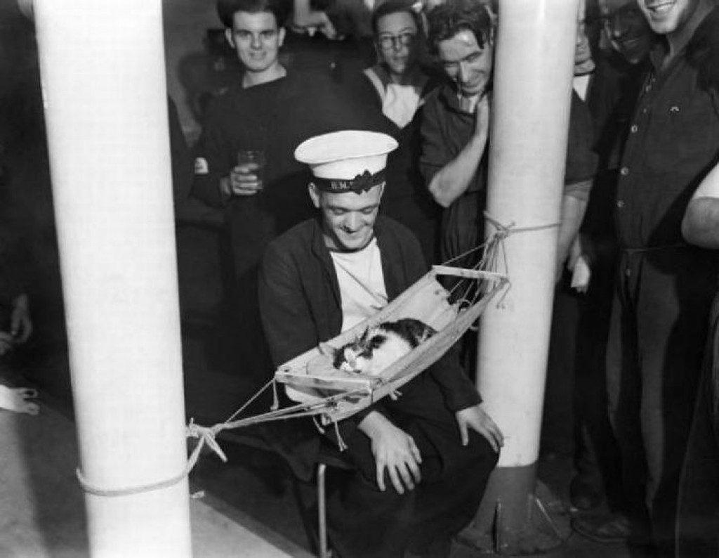 Российские моряки возле спящего котенка, 1941.