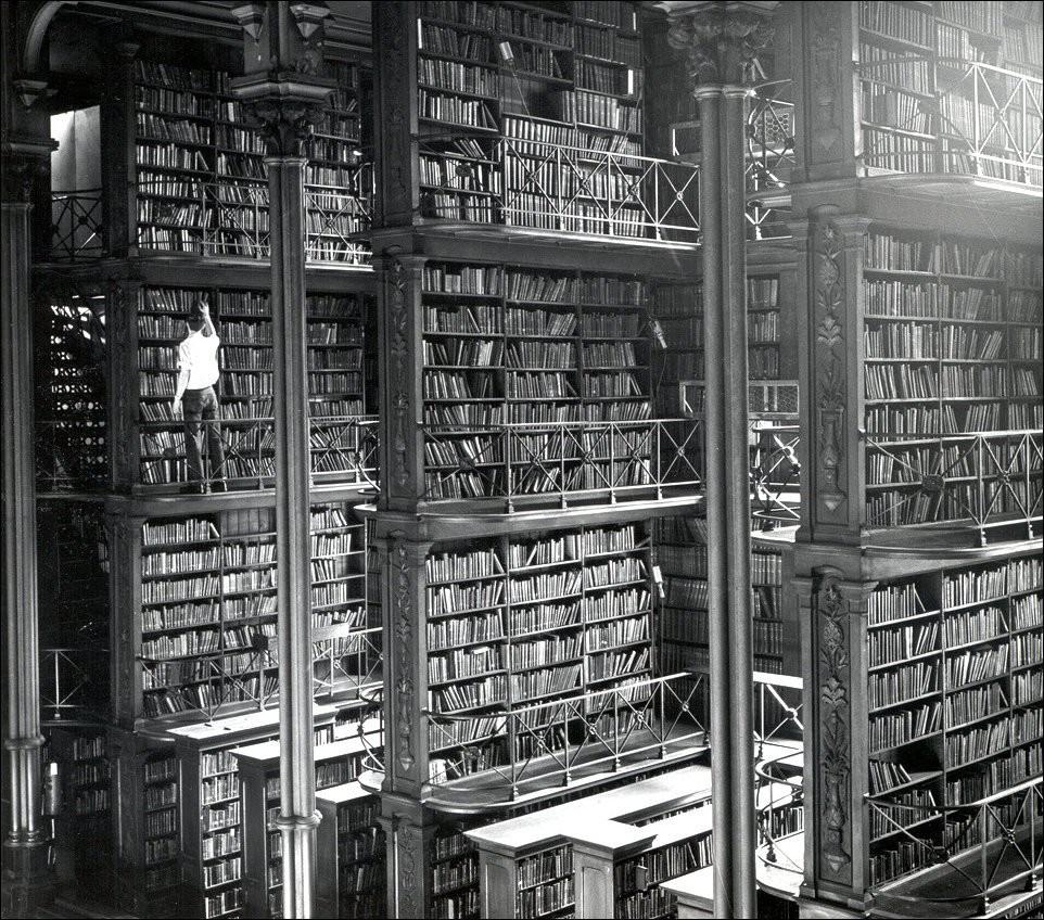 Эта библиотека никого не оставит равнодушным, 1874.