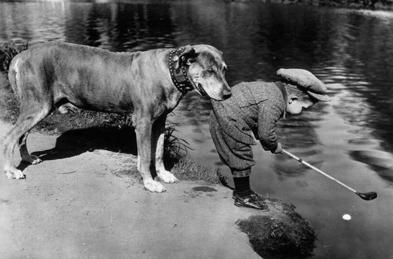 Собака защищает своего маленького владельца, 1920.