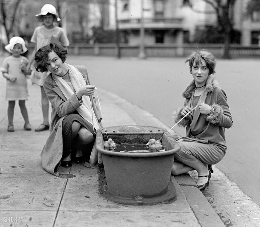Женщины в Вашингтоне, округ Колумбия, купают домашних утят, 1927.