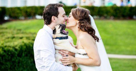 свадебные снимки