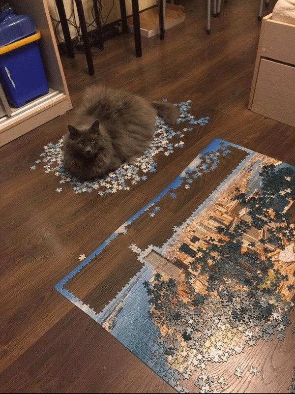 «Ты что-то здесь делал?»