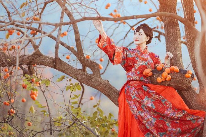 «Красная хурма». Автор фото: Фан Сяолинь.