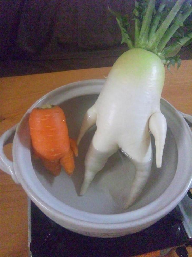 6. Редька и морковка принимают ванну. Можно не беспокоить?
