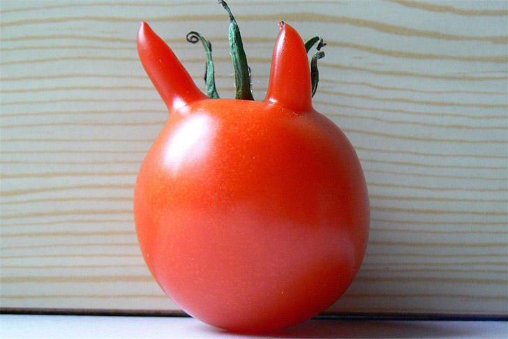 8. Злобный помидор-сатана. Явно что-то задумал.