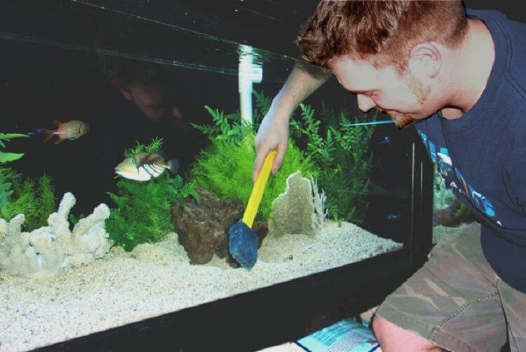 14. Добавьте раствор перекиси при уборке аквариума, и внутри резервуара грязь будет образовываться медленнее.