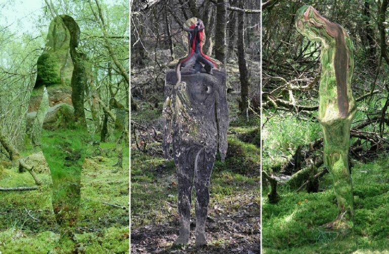 Скульптор Роб Малхолланд установил в одном лесу в Шотландии оригинальные стеклянные скульптуры.