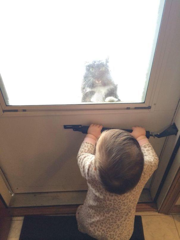 15. За окном -2 и кот очень хочет домой