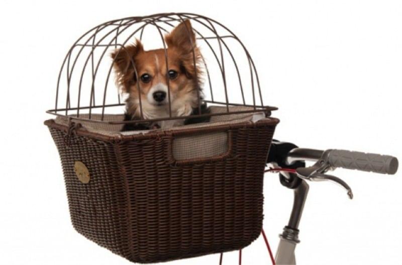 8. Велосипедная корзинка для собак и спокойствия хозяина