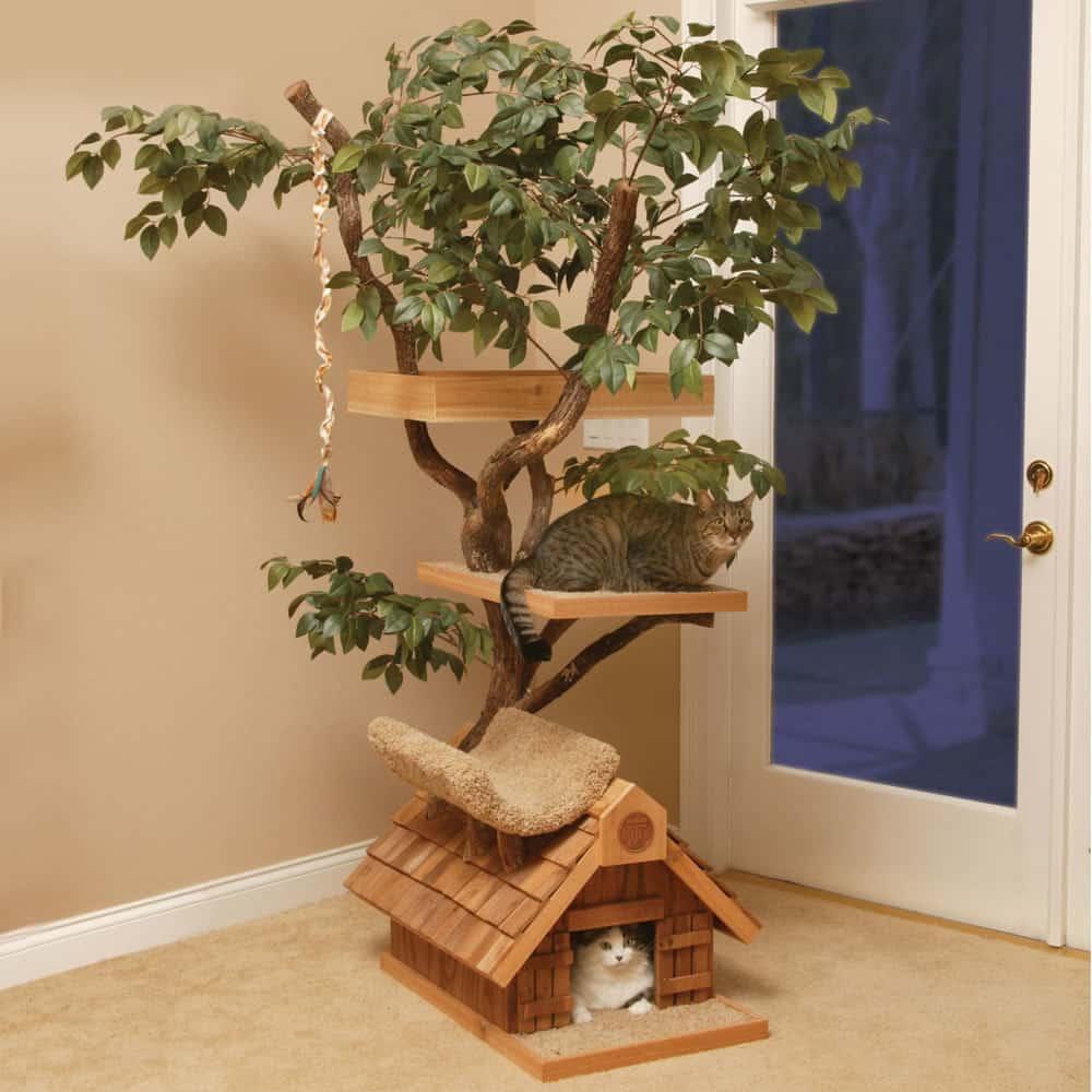 11. Живое дом-дерево для мурлык