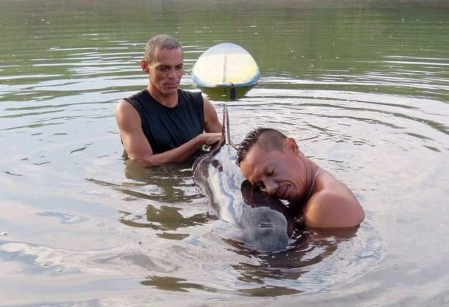 9. Двое парней-серферов заметили страдающего малыша-китенка и не смогли пройти мимо — спасли его из сети