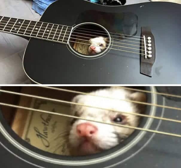 12. Просто он придумал новый способ игры на гитаре