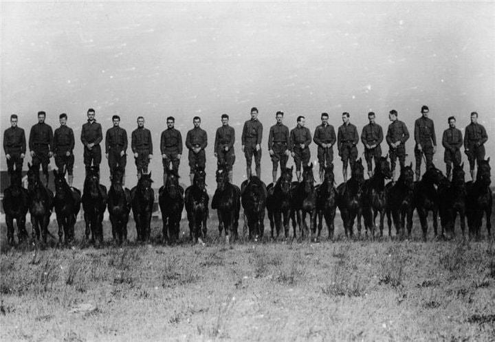 8. Британские кавалеристы, стоящие на своих лошадях, 1919 год