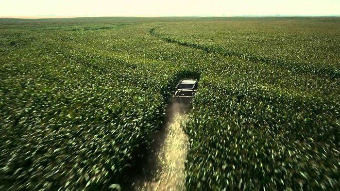 6. Для фильма «Интерстеллар» режиссёр Кристофер Нолан велел посадить 500 акров кукурузы для съёмки одной из сцен (потому что он не хотел использовать компьютерную графику). После окончания съёмок он продал всю взошедшую кукурузу и вернул деньги в бюджет