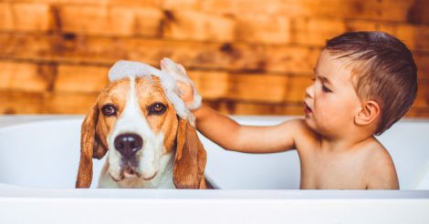 мыться каждый день