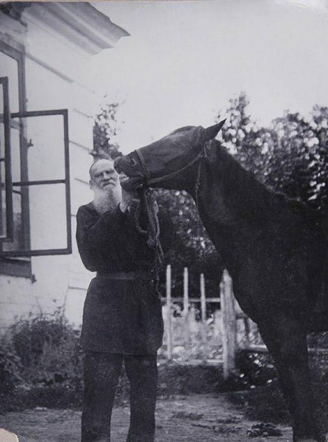 11. Лев Толстой со своим конем.