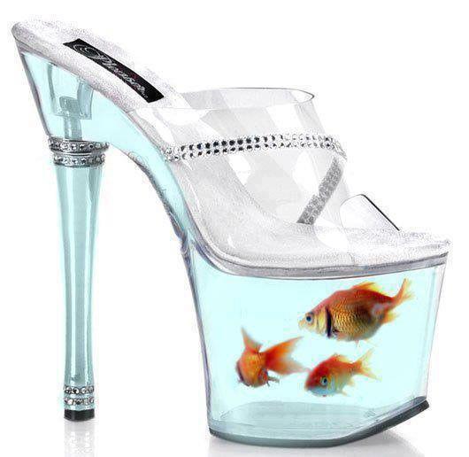 Да, рыбки настоящие