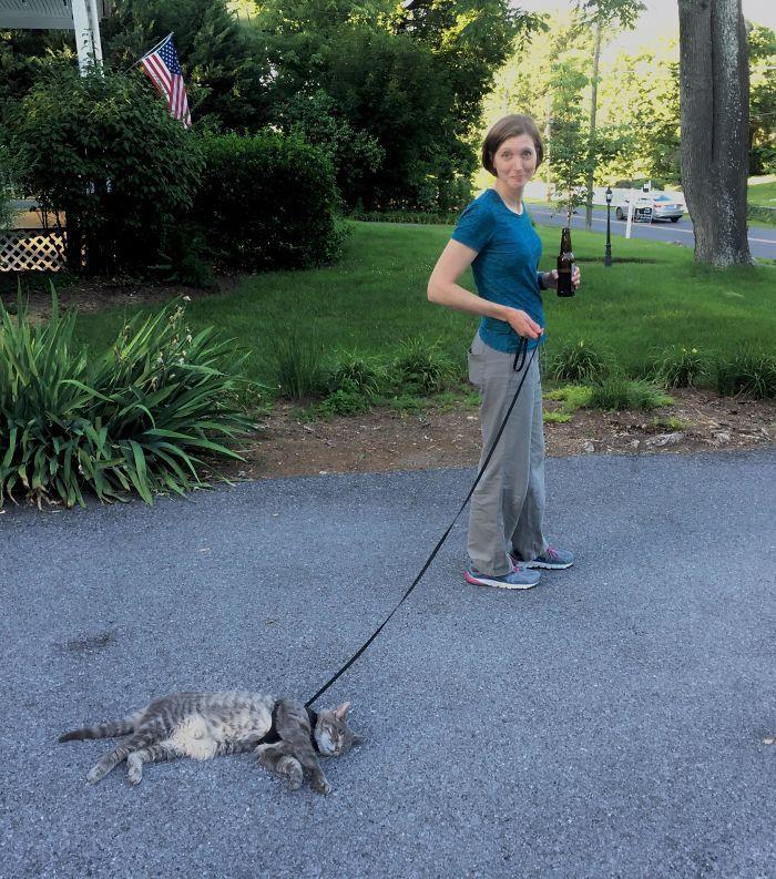10. «Жена попыталась погулять с кошкой»