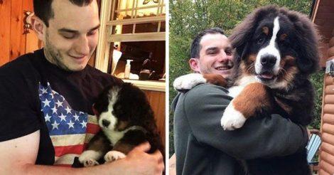 быстро он вырос