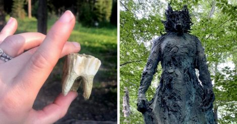 Таинственные вещи в лесу