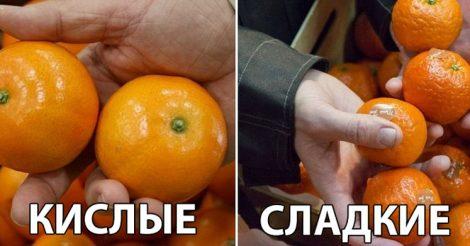 вкус мандаринов