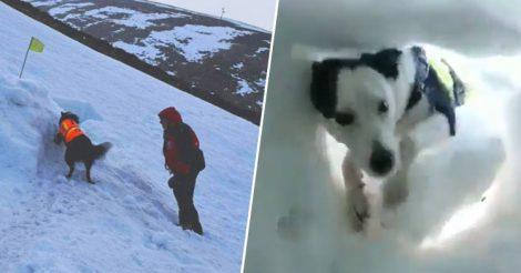 Инструктор укрылся в снежном плену