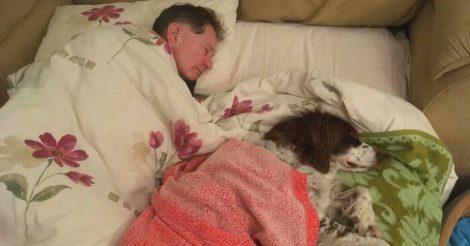 спят со слишком стареньким псом