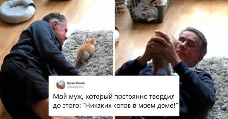 против животных в доме