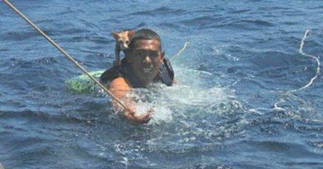 спас кошек с тонущего корабля
