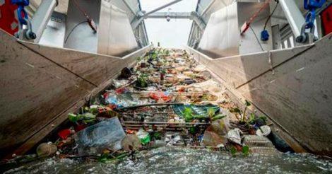 50 тонн мусора в день