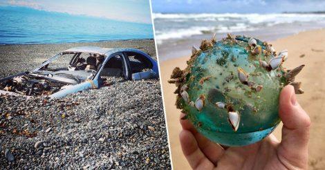 непредсказуемые находки на пляже