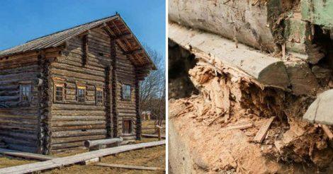 старинные срубы стоят веками