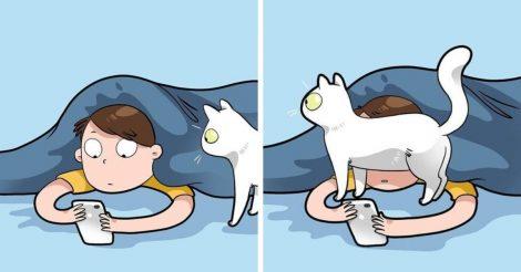Каждый котовладелец поймет